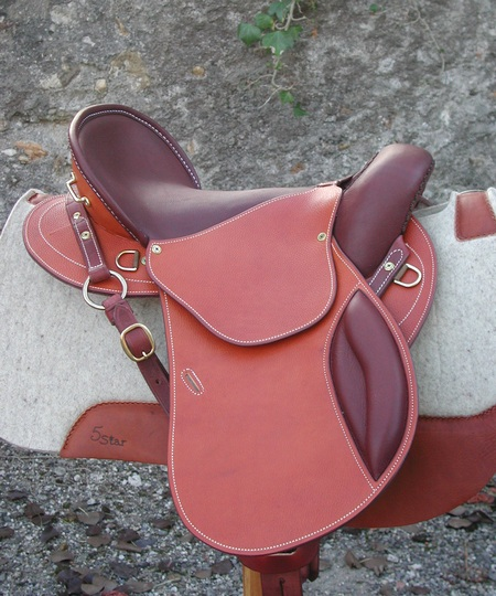 Dream saddle? - Chronicle Forums